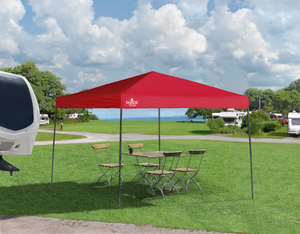 ST100 10 x 10 ft. Straight Leg Canopy