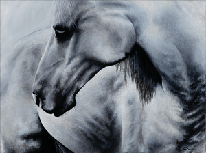 "18""x24""  Modern art with a personalized take on realism. I absolutely loved producing this animal portrait.  Printed on hahnemuhle photo rag, a white, 100% cotton paper with a smooth surface texture – guarantees archival standards. With its premium matte inkjet coating, Photo Rag® meets the highest industry standards regarding density, colour gamut, colour graduation and image sharpness while preserving the special touch and feel of genuine art paper."