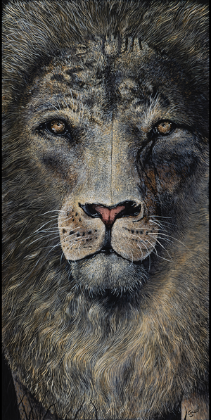 "15""x30""  A beautiful paper print of my animal portrait painting, La Mirada. I spent hundreds of hours on the original painting, and feel like the prints do a good job capturing what I put into this contemporary piece of animal art."