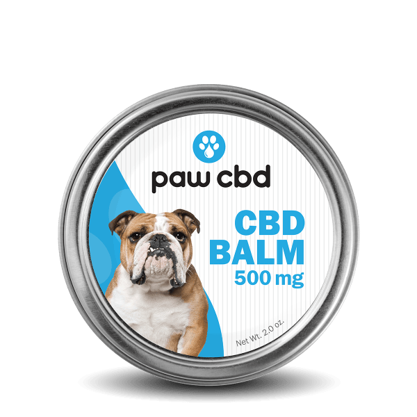 cbdMD Pet CBD Balm for Dogs - HempWholesaler.com