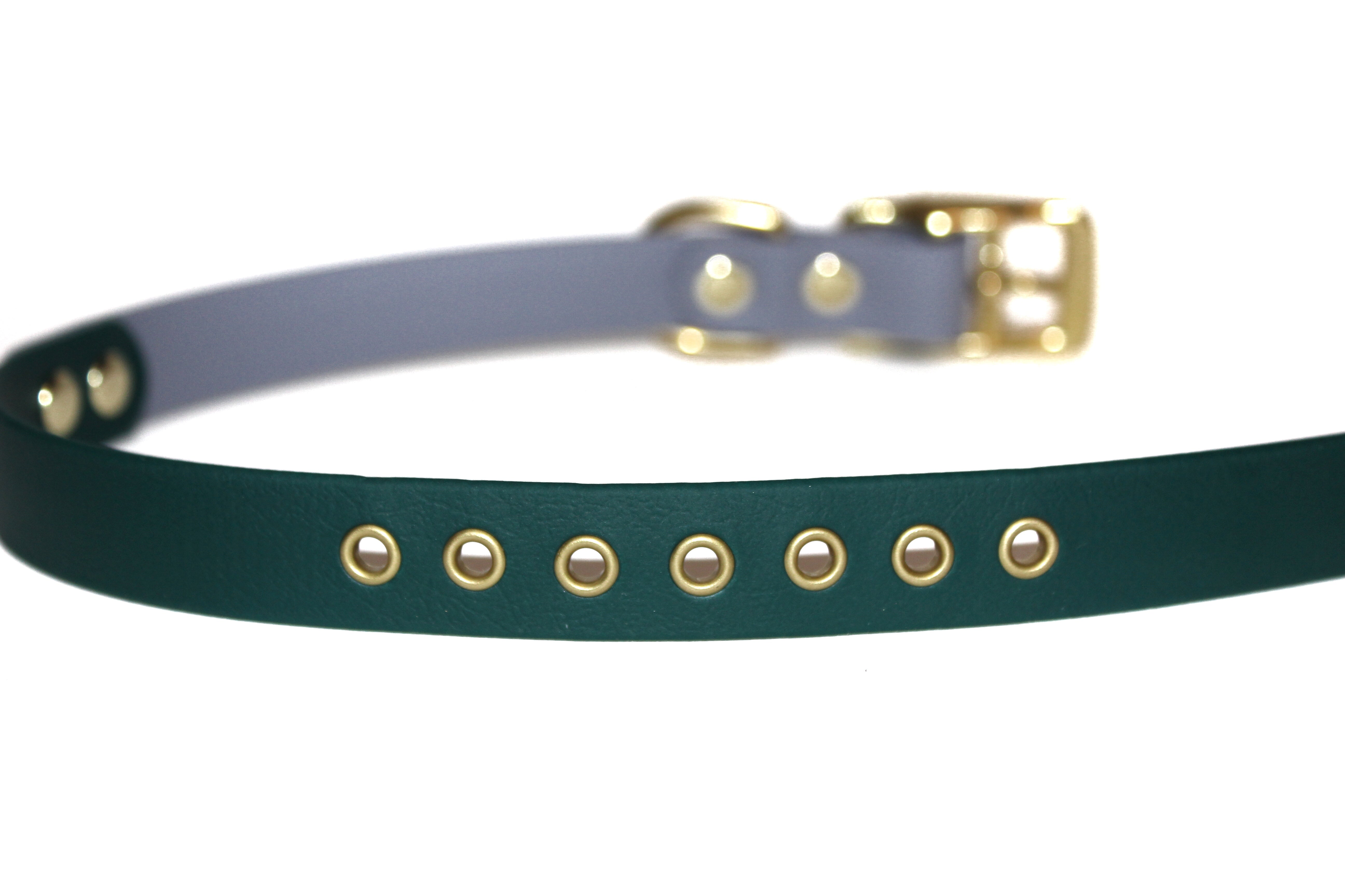 Two-Tone • Classic Collar with Eyelets