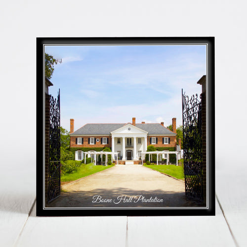 Boone Hall Plantation - Charleston, SC
