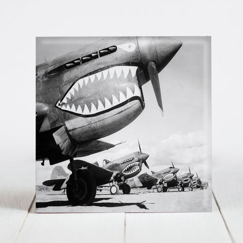 Curtiss P-40 Warhawk Flying Tiger Planes c.1942
