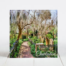 Load image into Gallery viewer, Oak Trees and Spanish Moss at Magnolia Cemetery - Charleston, SC