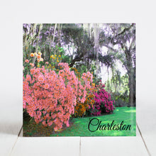 Load image into Gallery viewer, Azaleas at Magnolia Plantation and Gardens - Charleston, SC