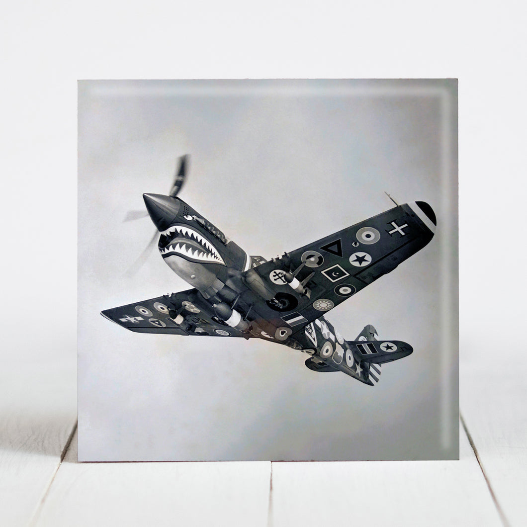 Curtiss P-40 Warhawk Flying Tiger with Regimental Insignias
