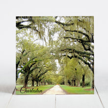 Load image into Gallery viewer, Road at Boone Hall Plantation - Charleston, SC