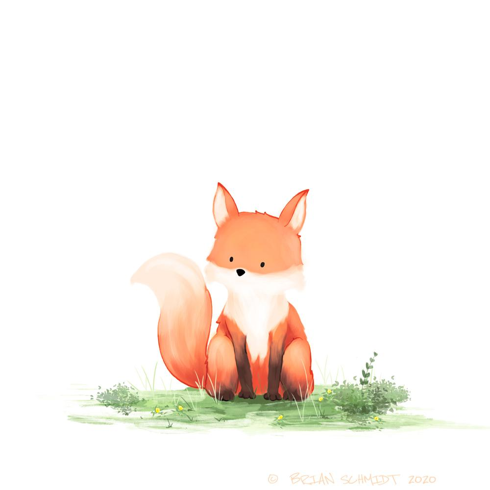 Fox Art Print 8x10 Matted