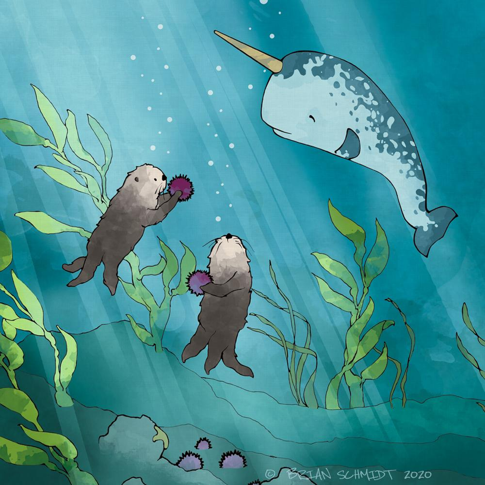Narwhal & Sea Otters Art Print 8x10 Mattted - Sharing Sea Urchins