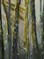 Jacqueline Dunn - Oil - Into The Forest