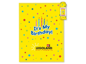 Ultimate LEGOLAND® Birthday Bundle - The Home Version!