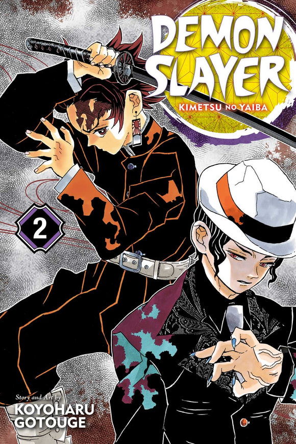 Demon Slayer: Kimetsu no Yaiba, Vol. 2 : It Was You