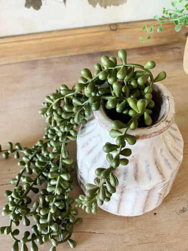 String of Pearls Succulent Strand (Faux) - Little Red Barn Door