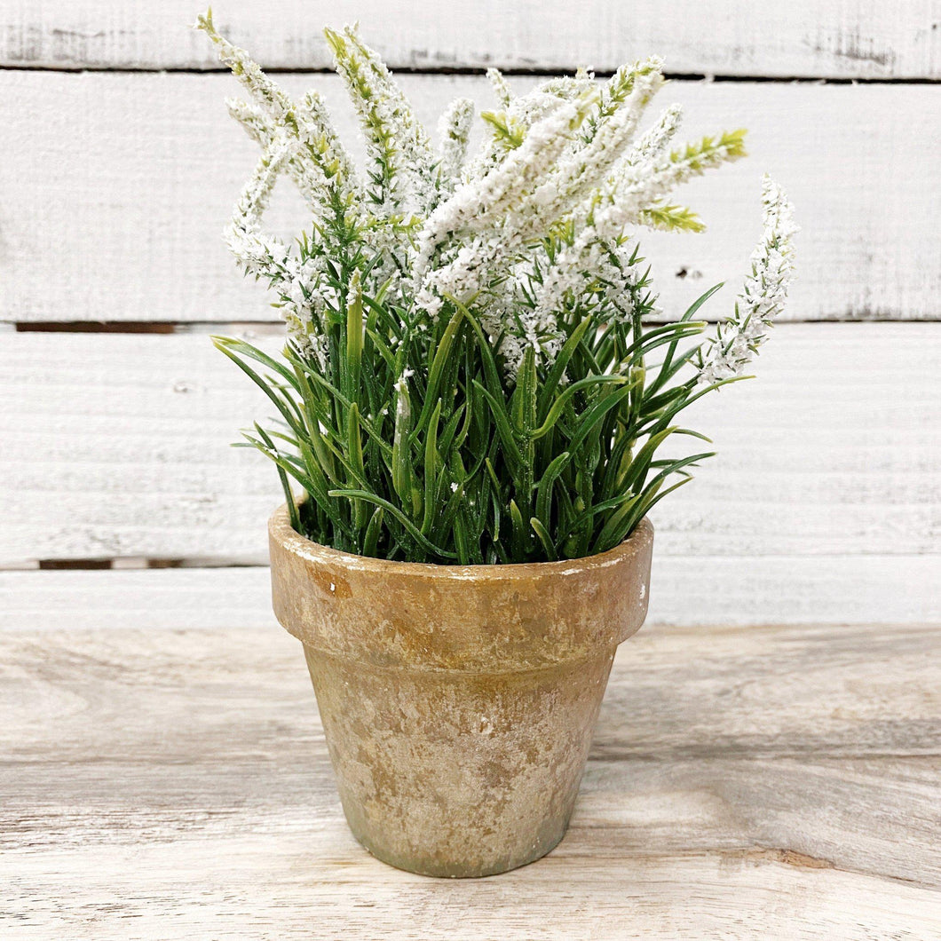 White Long Flower Potted Plant - Little Red Barn Door