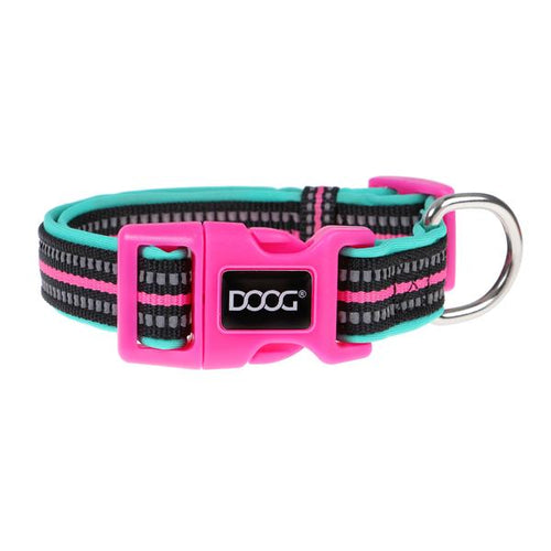 Neoprene Dog Collar: Rin Tin Tin