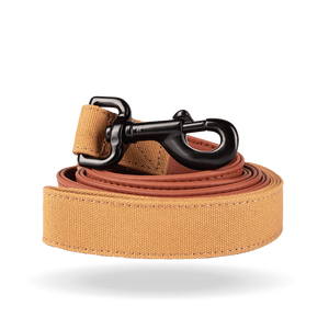 Terracotta Leash
