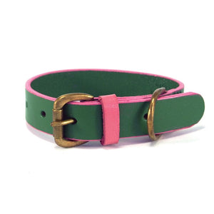 Leather Collar - Green & Pink