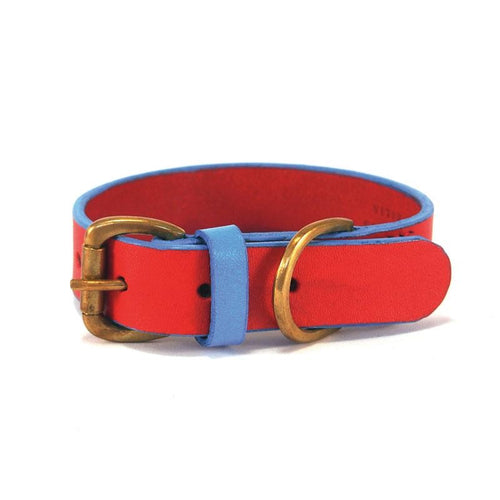 Leather Collar - Red & Blue