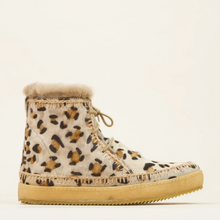 Load image into Gallery viewer, Argo Lace Up Ankle Boot I Leopard Beige