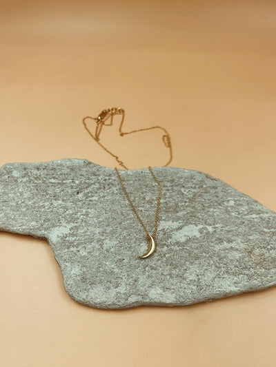 Mini Crescent Moon Sterling Silver Necklace in Gold Tone