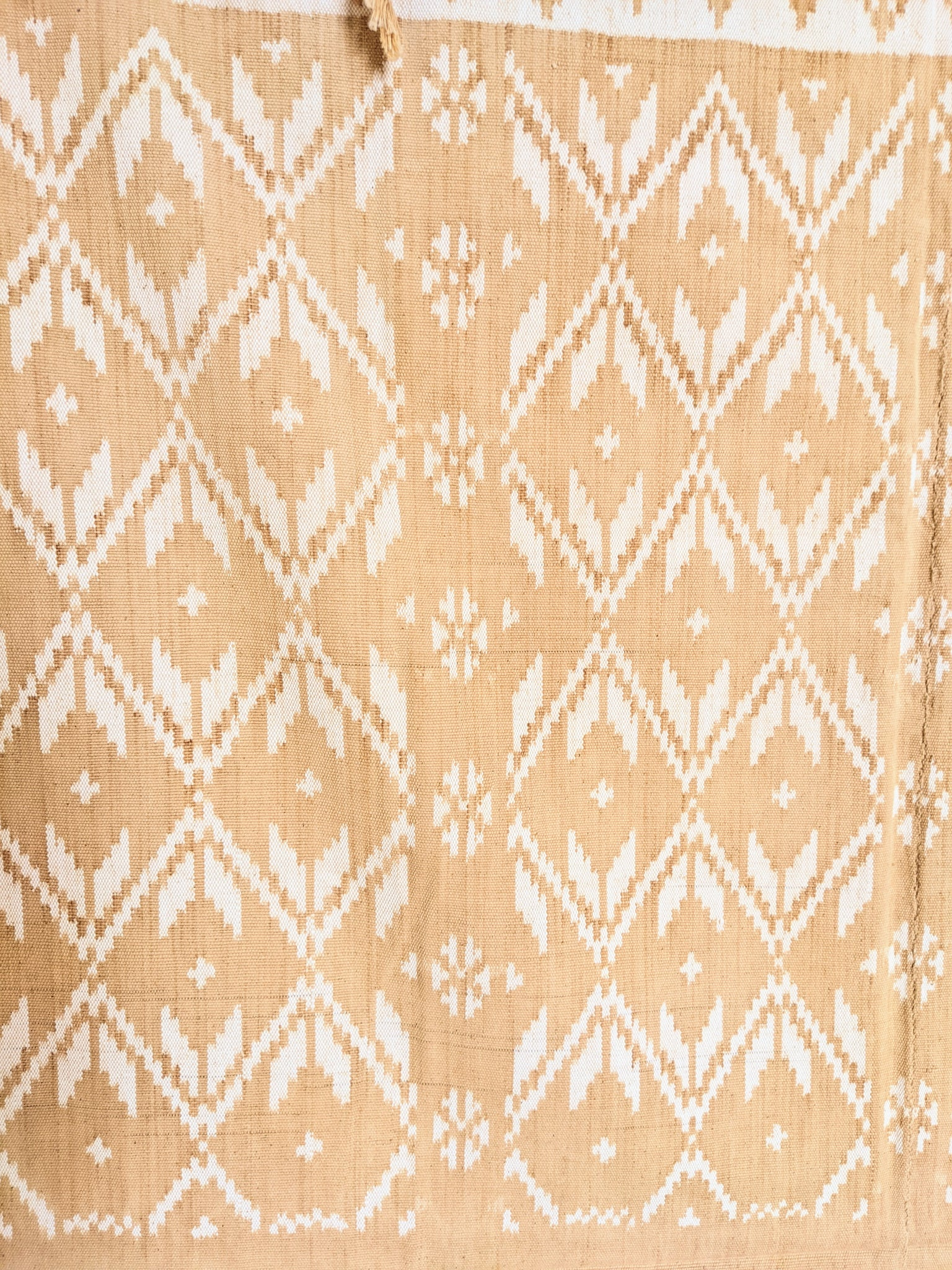 Ikat from Rote Ndao, soft Coral