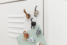 Load image into Gallery viewer, Cat Butt Magnets Set of 6