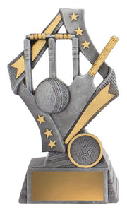 Flag Theme Cricket Trophy