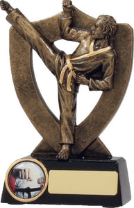 A313AA-400x621mm - Marital Arts Karate Trophy - male - gold resin with logo space and engraving, from Gold Coast Trophies near Reedy Creek