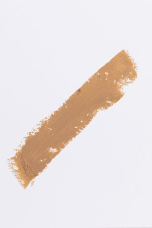 Foundation Stick in Dune