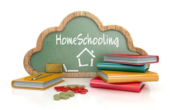 Home teaching this season: 4 ideas to make learning fun! - ruffntumblekids