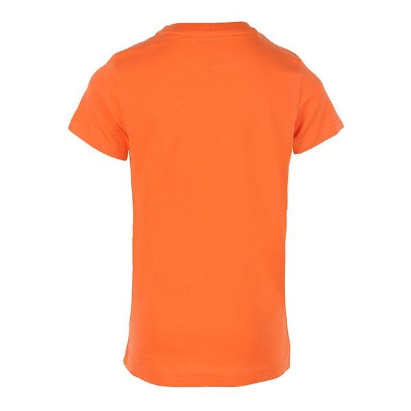 Boys Orange Short Sleeve Graphic T-Shirt - ruffntumblekids