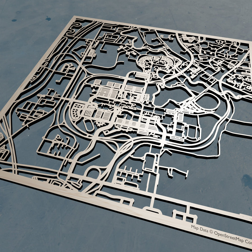 University of Buffalo  3D Wooden Laser Cut Campus Map