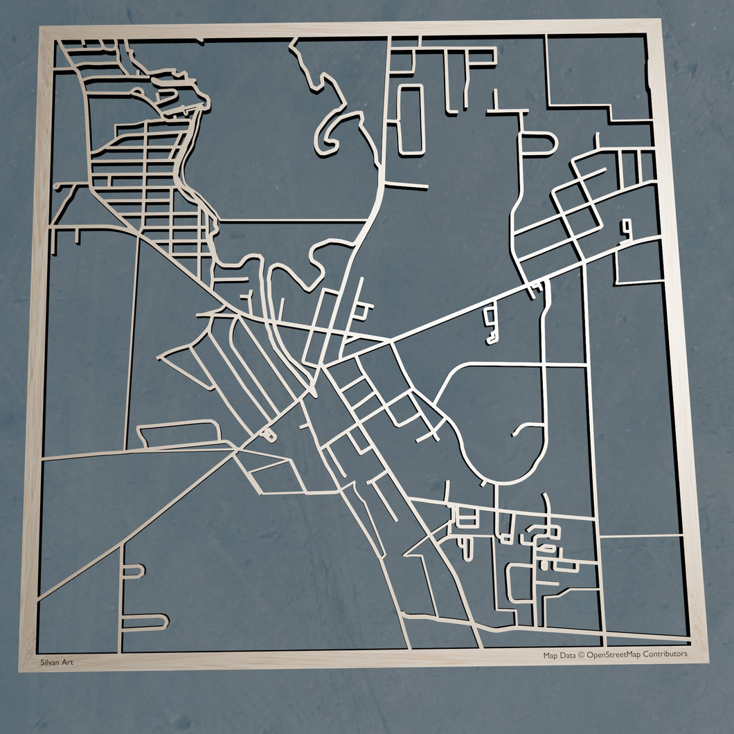 Edinboro University of Pennsylvania  3D Wooden Laser Cut Map - Silvan Art