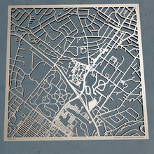 Load image into Gallery viewer, Arcadia University 3D Wooden Laser Cut Map