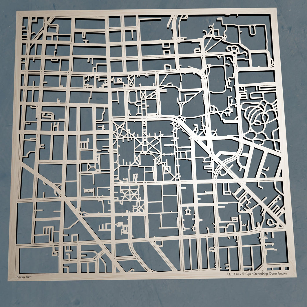 University of Michigan, Ann Arbor 3D Wooden Laser Cut Campus Map