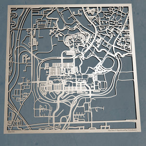 University of Buffalo  3D Wooden Laser Cut Campus Map | Unique Gift