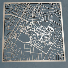 Load image into Gallery viewer, UNC Wilmington 3D Wooden Laser Cut Campus Map