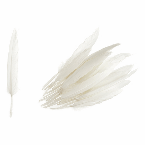 Trimits Duck Feathers - White (Pack of 24)