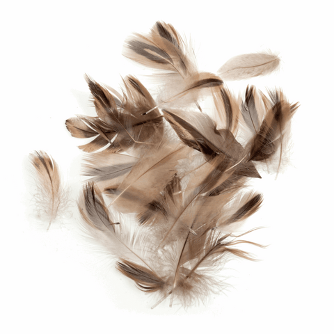 Trimits Duck Feathers - Natural (Pack of 24)