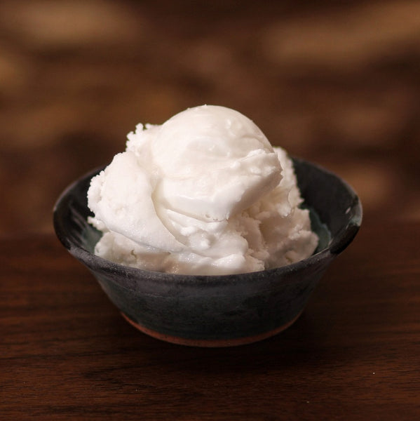 a bowl of dairy-free coconut ice cream