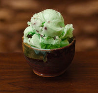 a bowl of non-dairy mint chip ice cream