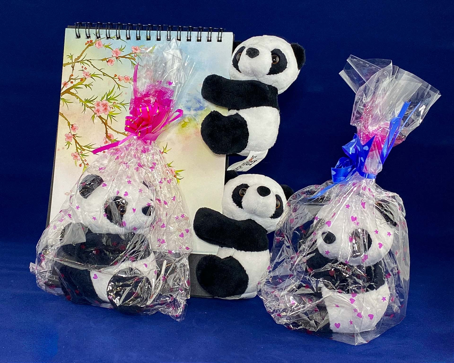 Tian's Gifts: Cuddly Panda Soft toy