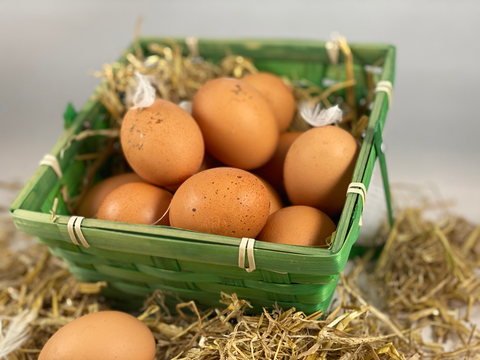 Northern Delicious : 12 Free range Eggs from Ullswater