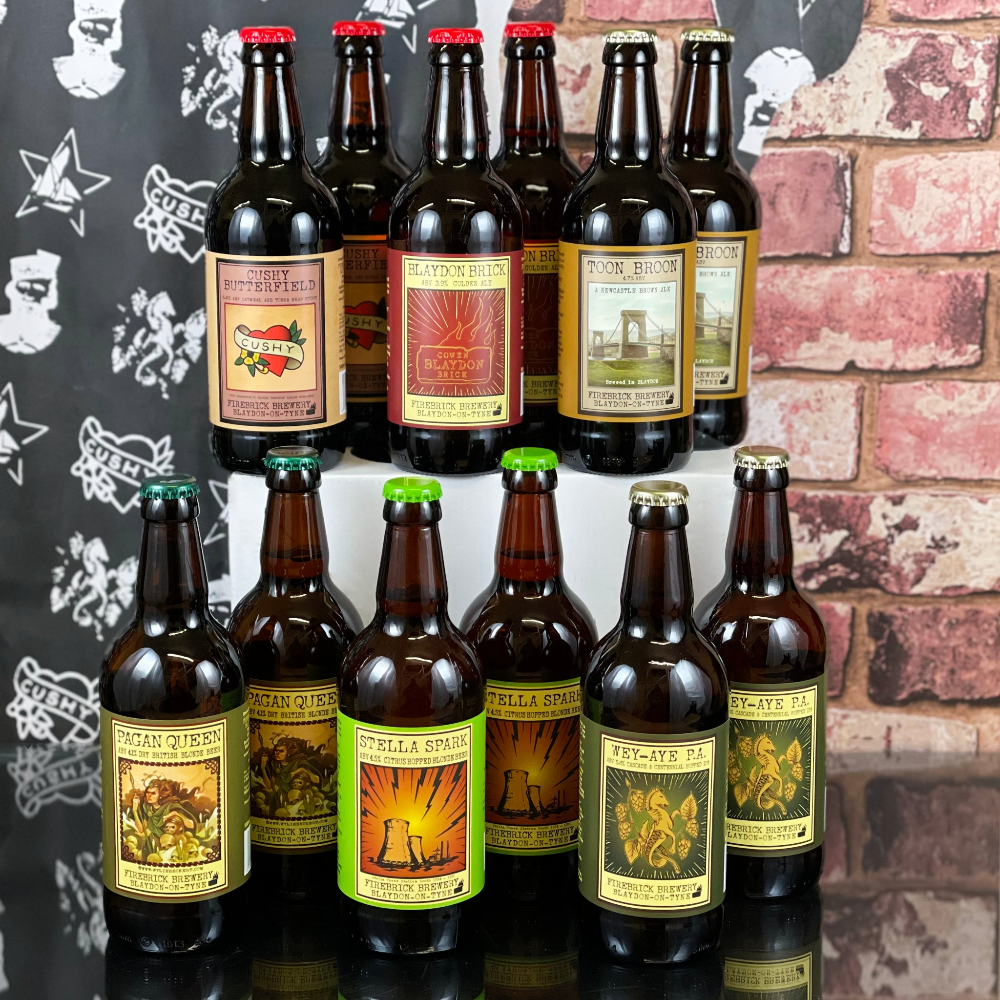 Firebrick Brewery: Brewer's Special Mix (12 x 500ml)