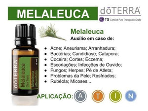 Melaleuca (Tea Tree) 15ml