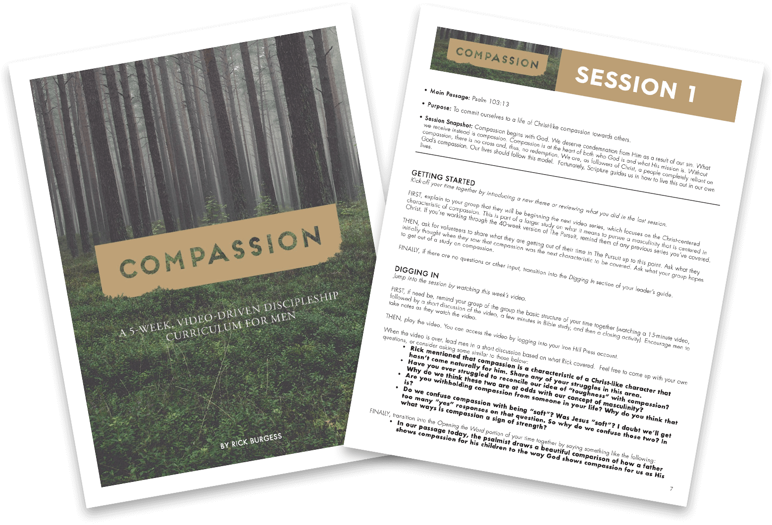 Compassion Sample