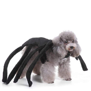Spider Dog Costume - Teqtus