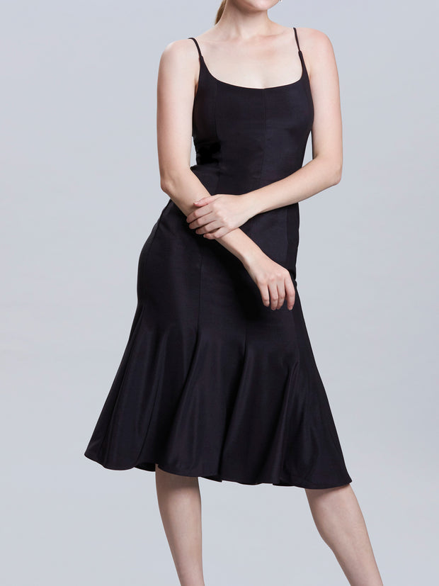 Camisole Panel Fit & Flare Dress