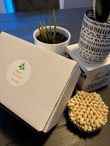 Ngome Essentials Subscription Wellness Boxes