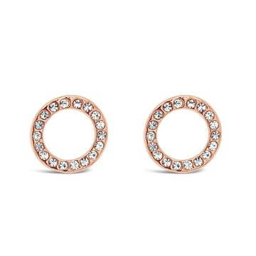Absolute Rose Gold Circle Earrings